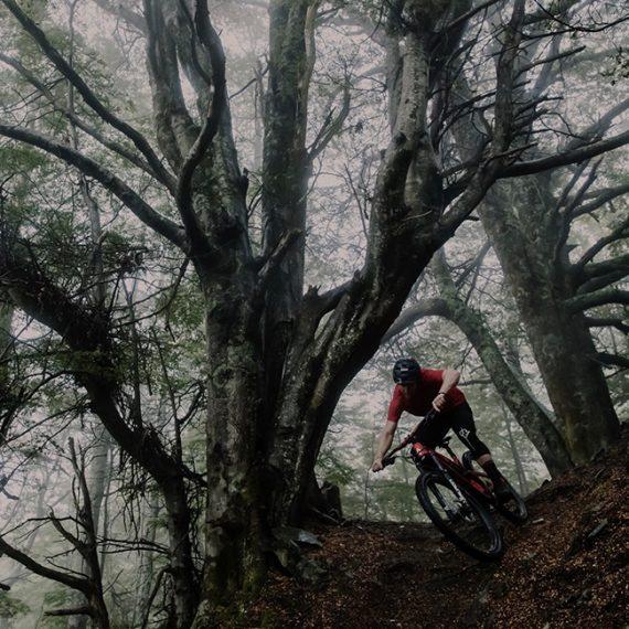 Biking-002